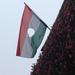IMG 0006 56-os zászló Szombathelyen