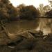 069 Hernád folyó Hernádcéce magasságában