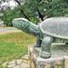 Teknősbékás kút