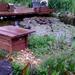 eső után2