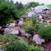 sziklakert eső után