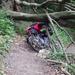 A Csodás Bakony 2012 06 02 080