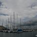 Kikötő (Muggia)