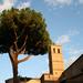 Fények (Trastevere, Róma)