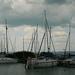 Borús kikötő