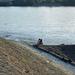 Rákos patak és a Duna