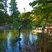 Margitsziget - Japánkert átadás után