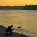horgászfiú és egy hattyú a Dunán