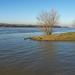 Rákos patak és a Duna találkozása