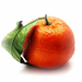 A csodálatos mandarin