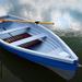 Új csónakok 1