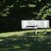 Hova üljek? :)