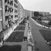 TahiUtiLtp-1966-fortepan.hu-65425