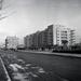 SzentIstvanPark-1936Korul-fortepan.hu-146124