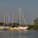 Vitorlások a kikötőben