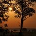 Napkelte a réten