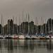 Reggel a kikötőben