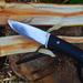 Szőrborotválós vagastszet fakanal DSC 8675