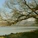 A Duna-parton 1