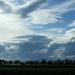 Fasor felhőkkel