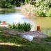 A tó 169
