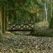 Arborétum 140