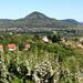 Szent-György hegyen