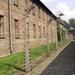 Album - Auschwitz