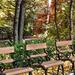 Padok Park Erzsébet kert Sopron