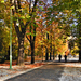 Erzsébet kert, Sopron, ősz, kerékpárosok