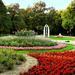 Park Virágok Nyár