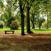 Esterházy-kastély Fertőd Park