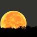 A Hold okt. 06. reggelén