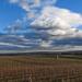 Decemberi felhők 2