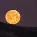 Legurult a Hold hegyről :)