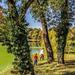 Martonvásár - Brunszvik-kastély, kastélypark