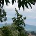 Tokaj, kilátás a Finánc-dombról