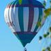 Szeged, Hőlégballon a város felett