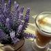 Kávészünet 1