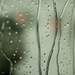 Eső 2.