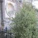A régi szobor hűlt helye