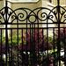 plébánia kerítés