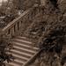 lépcsőről