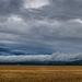 Felhők