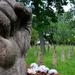 Album - Hősök temetője
