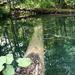 Album - Plitvicei Nemzeti park