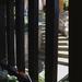 Lépcső és kerítés