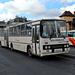 Ikarus 280.33 (GNX-374)
