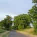 Délutáni út