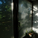 Reggeli árnyjáték